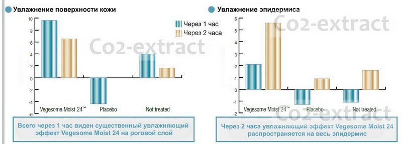Тест Vegesome Moist 24